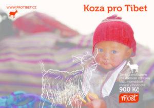 thumbnail of Certifikat koza